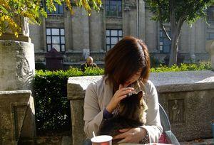 トルコの猫と遊ぶ.jpg